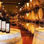 Five Wine Importers You Need To By No Means Make